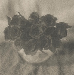 pictorialist inspired roses